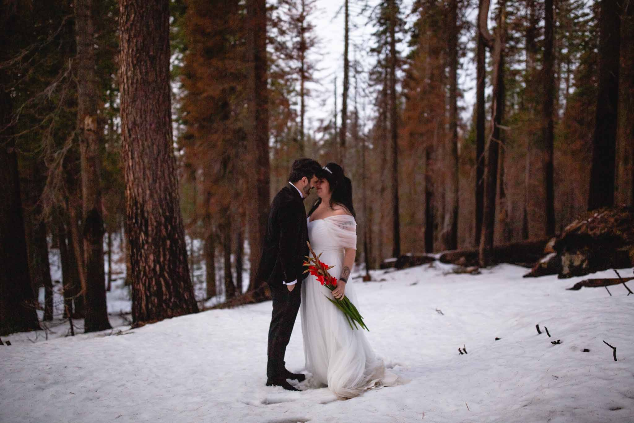Destination Photographer, Yosemite National Park,Wedding, Pictures, Photos, Rocker in love, Ana Corsmeier